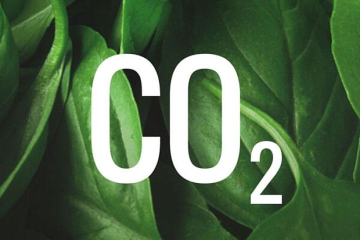 Η Διαχείριση του Διοξειδίου του Άνθρακα (CO2) στους Ψυκτικούς Θαλάμους